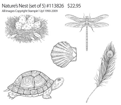 Natures Nest Stampin' Up! Stamp Set