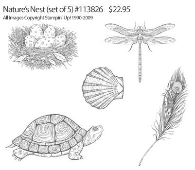 Nature's Nest Stampin' Up! Stamp Set - Images Copyright Stampin' Up!