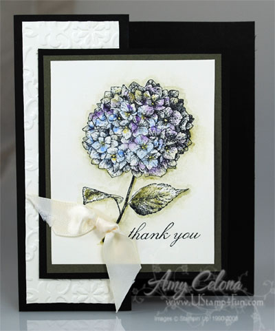 Because I Care Hydrangea Thank You Card