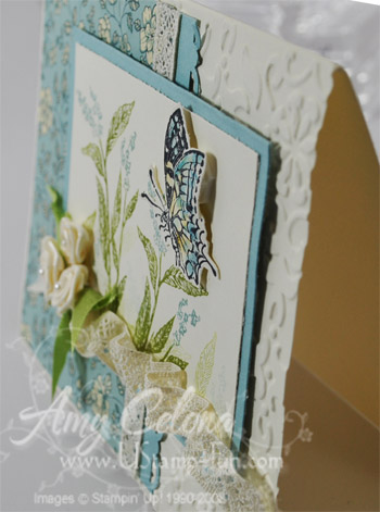 Sideview of Butterfly card
